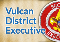 Vulcan-District-Executive